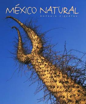 Mexico Natural